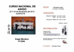 cartel curso angel 2013