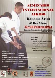 2014-02-15 - Kaname Ariga
