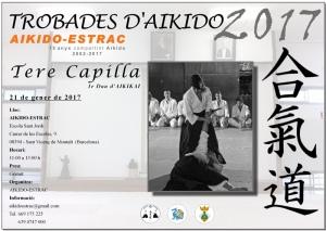 Cartell Curs d'Aikido Tere Capilla