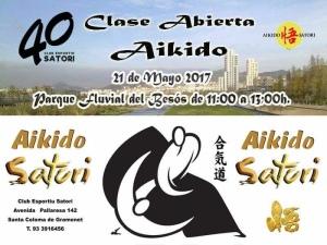 Cartell Curs d'Aikido 40 Aniversari Satori