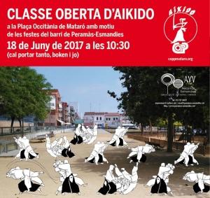 Cartell Classe d'Aikido